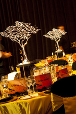 2009 AHA Wolf Blass Verae Accommodation Hotels Ball Theme