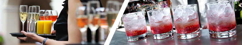 RSA Online & Cocktail Mixology Classroom Course Bundle